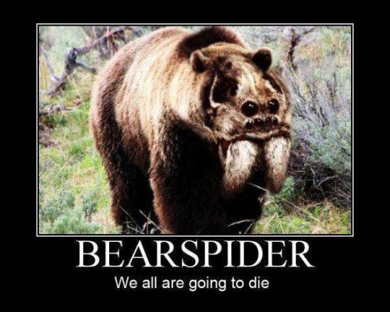 fyxt-rpg-motivational-poster-bear-spider-rug