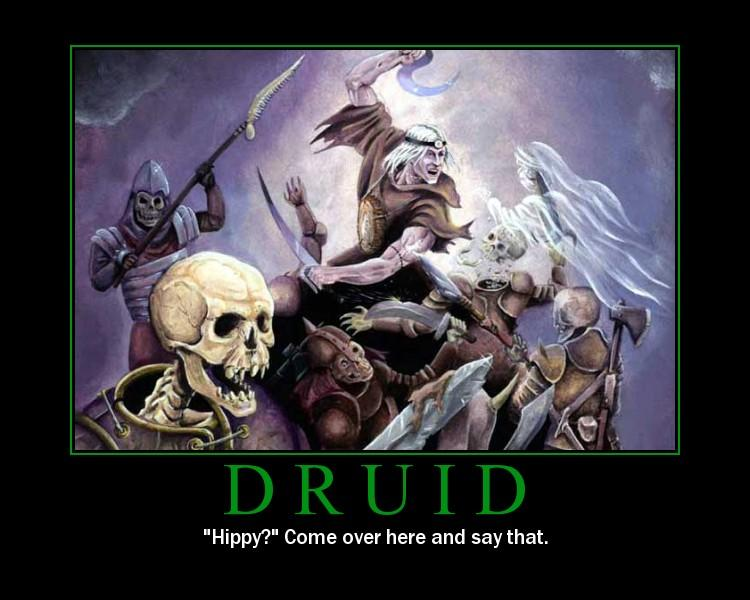 fyxt-rpg-motivational-poster-druid-hippy