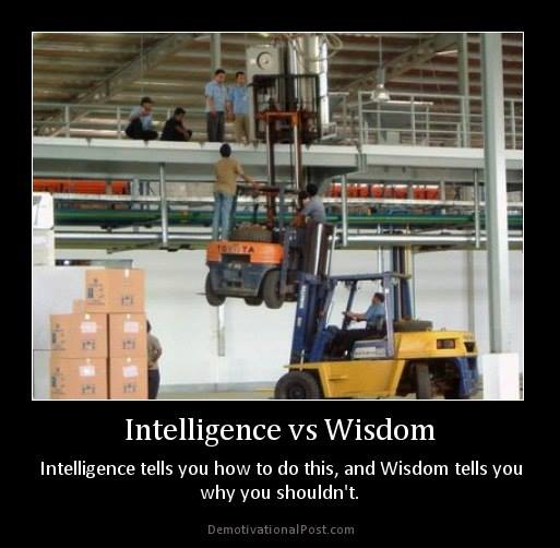 fyxt-rpg-motivational-poster-intelligence-v-wisdom