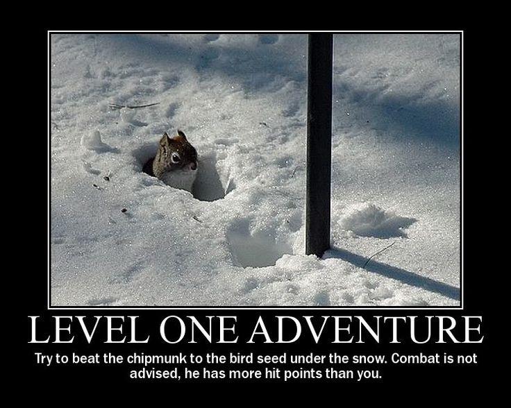 fyxt-rpg-motivational-poster-level-1-adventure