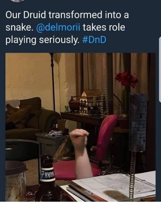 fyxt-rpg-meme-druid-snake-rp