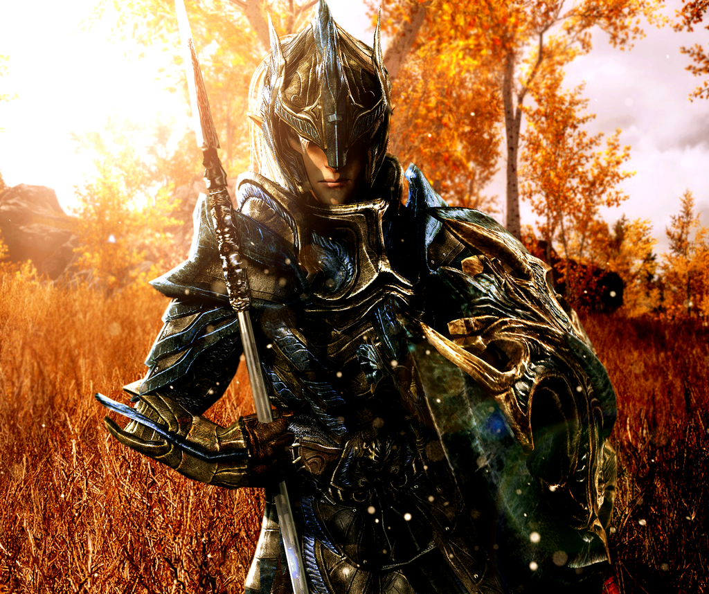 Image of Valiant Elvin Soldier Armor