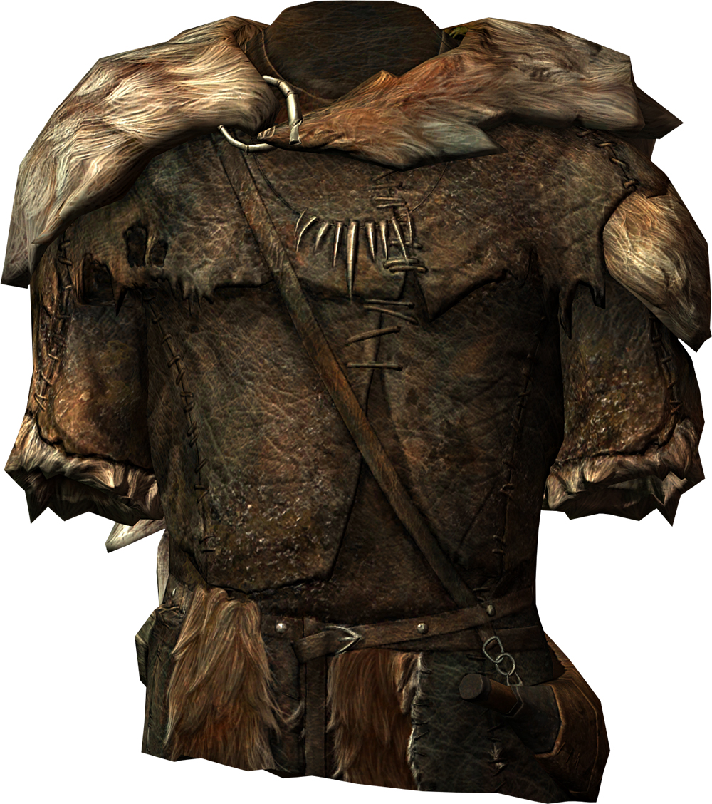 Image of Hide Armor of Health
